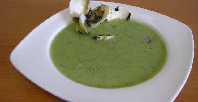 Sopa de Courgette com Ameijoas - Tachos e Panelas