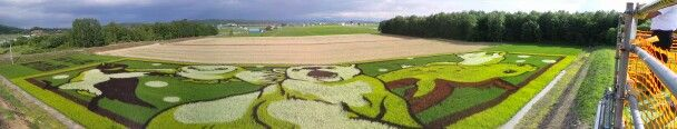 First time for Tambo art@Asahikawa,Hokkaido,Japan.