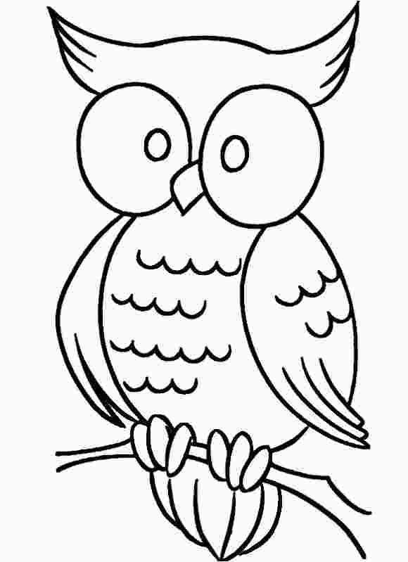 Easy Cute Owl Coloring Pages Owl Coloring Pages Easy Coloring Pages Cartoon Coloring Pages