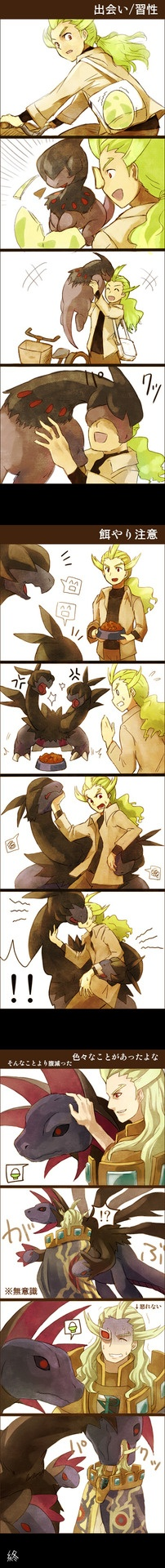 Ghetsis Daw! Preventing the King of Team Plasma can resist loving Pokemon XD