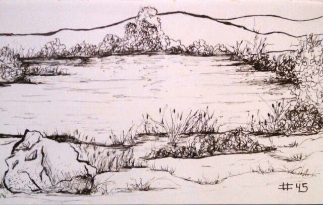 45 Of My 75 Pen Sketch Challenge My Sisters Pond By