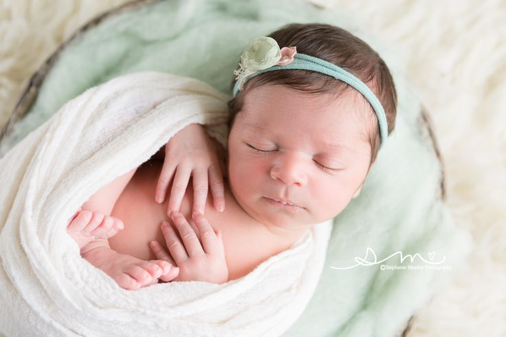Favorite newborn basket pose newborn pose with wrap newborn photography newborn session natural light newborn photography st louis missouri newborn