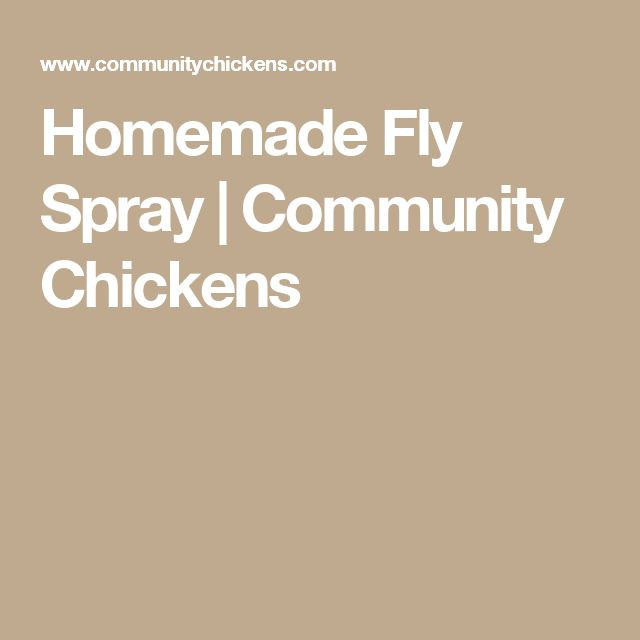 Homemade Fly Spray | Community Chickens