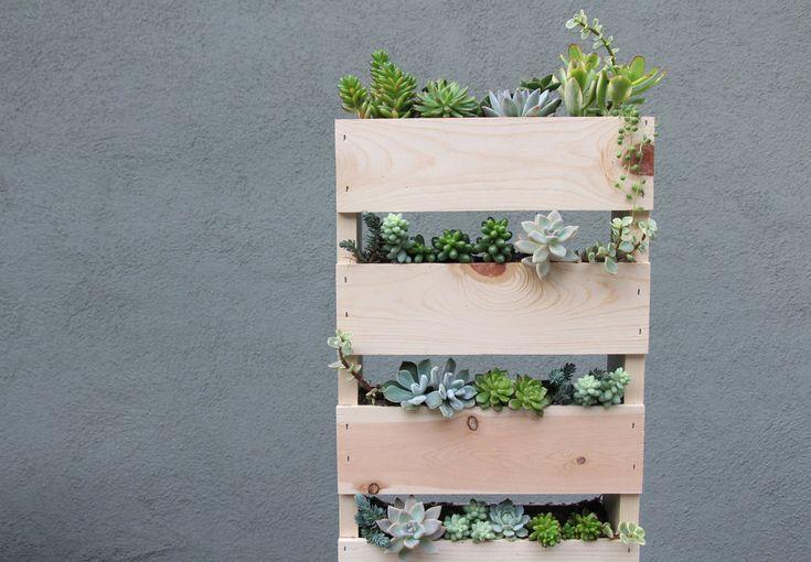 49 best diy images on pinterest succulents plants and for Pallet succulent garden