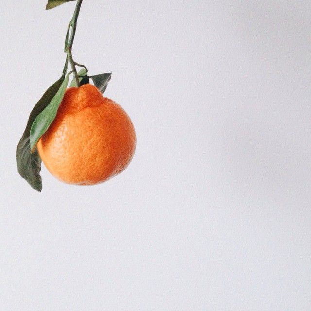 Satsuma season! Gimmie all the vitamin C | with McKel of Nutrition Stripped