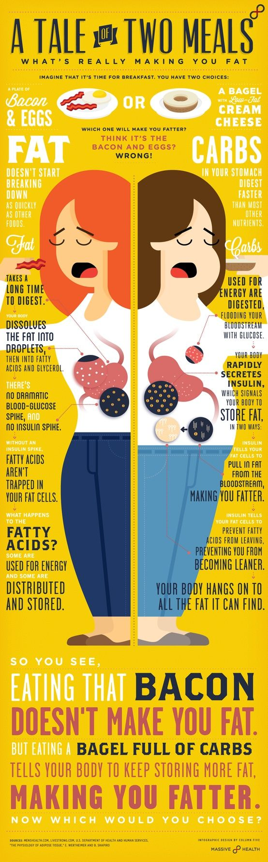 Una explicación más clara de que lo que hace engordar es comer carbohidratos y no grasas (en inglés).