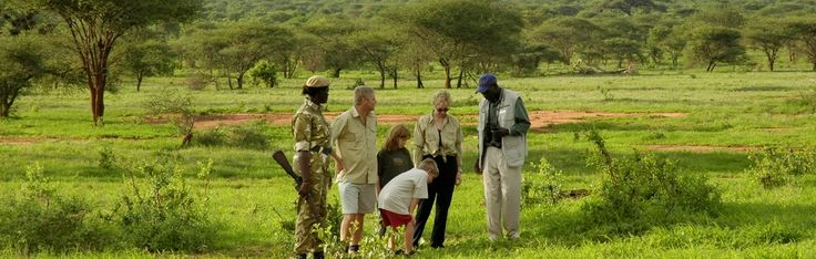 Kenya is a beautiful place in the world, which is targeted by tourists and casual visitors all around the year. Spend your holiday vacation with #Kenyasafariholiday. Know more @ http://kenya-safaris.co/on-safari/
