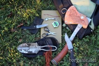 Foraging - Getting Started