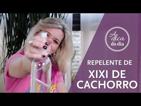 REPELENTE DE XIXI PARA CACHORRO (DIY)| A DICA DO DIA COM FLÁVIA FERRARI - YouTube