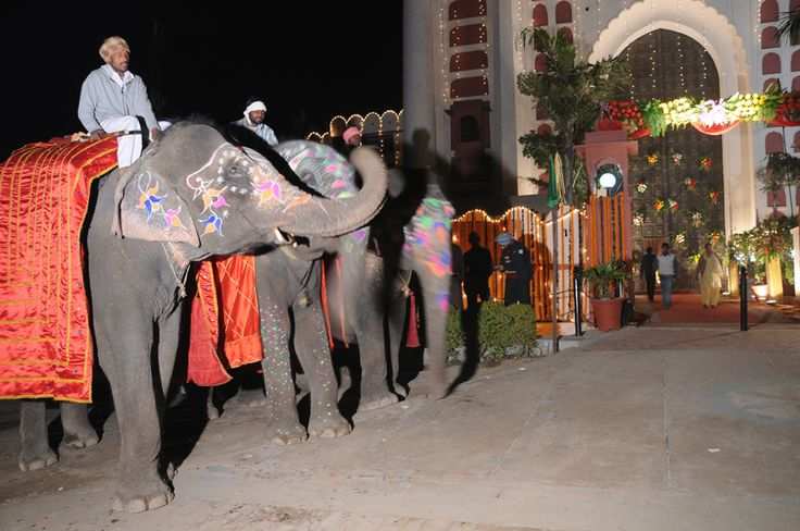 More Information  And Latest Deals Call Us at +91 9814200007, +91 9814222845 or Visit http://www.thefortramgarh.com