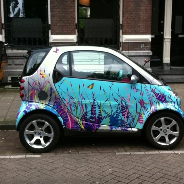 SmArt Car... I WILL have one if these before I die