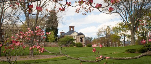 Sweet Briar College will shut down. Unbelievably bad decision.