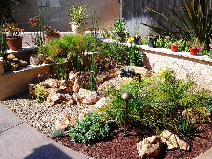 Water Wise Garden Designs Markcastroco