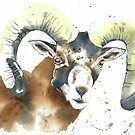 Cyprus Mouflon by Corinne Matus – #corenne #Corinn…