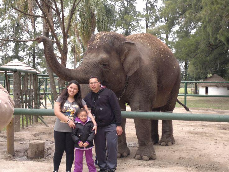 Zoologico de Lujan