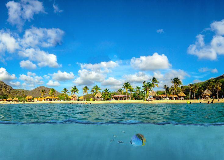 Heeft u ook zo een zin om naar Curaçao te gaan als u dit ziet?