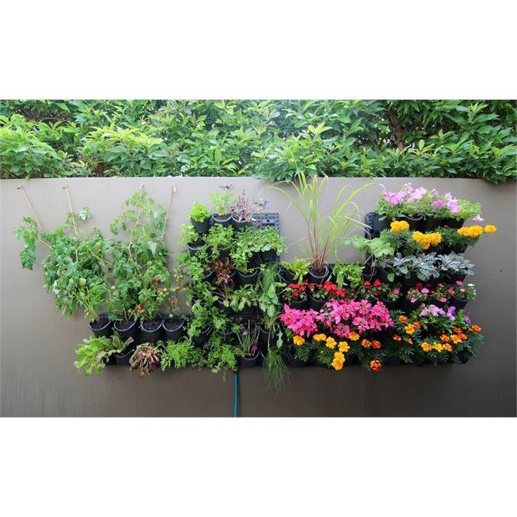 Holman GreenWall Vertical Garden Kit - Bunnings Warehouse