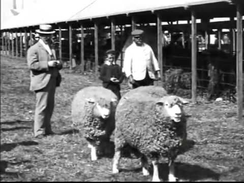 (88) The Lost World Of Mitchell & Kenyon (Part 3) (116 years old Archive Film) - YouTube
