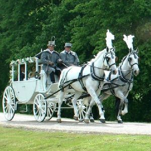 Horse & Carriage for the fairytale wedding