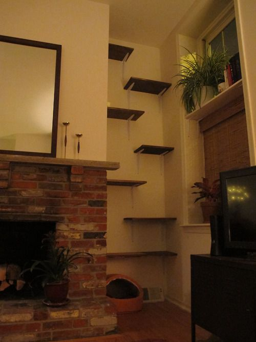 DIY cat shelves. Alternative to an expensive cat tree