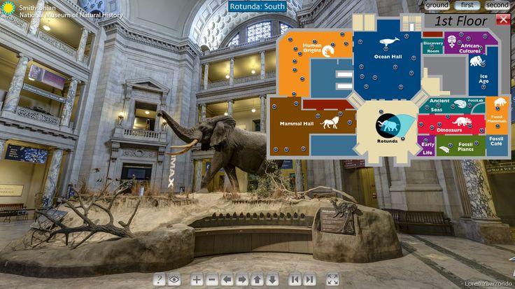 Do Louvre à Capela Sistina: veja cinco museus para você pode fazer um tour virtual