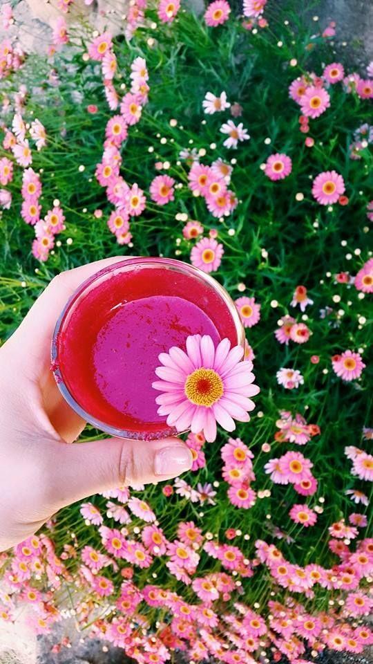 SS 15 | Antonella Boutique  #Spring #Summer #Colours #Flower #AntonellaBoutique