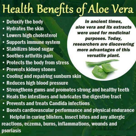 Aloe Vera health benefits www.AloeLiving.net