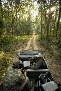 ModaeStyle: Taj Safaris, alla scoperta del libro della giungla...