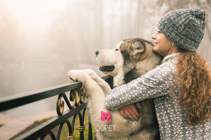 #Koirankoulutus Tuntuuko sinusta ikinä siltä, että muiden koirat käyttäytyvät kuin enkelit, ja sinun koirasi ei ole vielä sisäsiisti monien vuosien jälkeen? <3  https://oupet.co/blog/koiran-koulutus  Do you ever feel like your dog is the only dog who doesn't behave well? <3