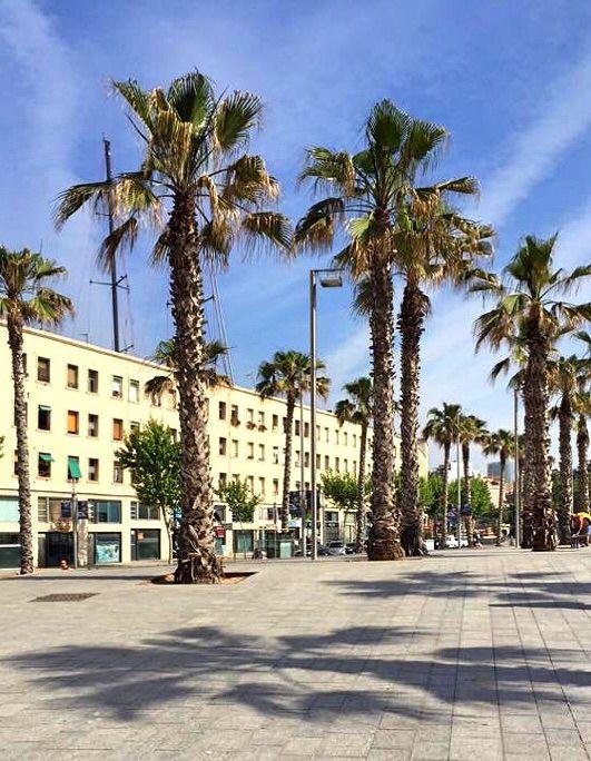 Beach boardwalk in Barcelona