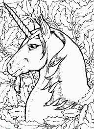Bilderesultat for heste tegninger