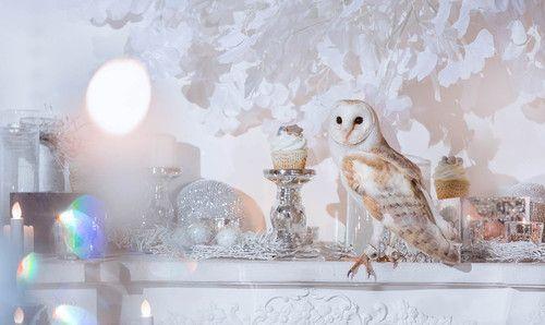Зимний фотопроект Ice Crystal