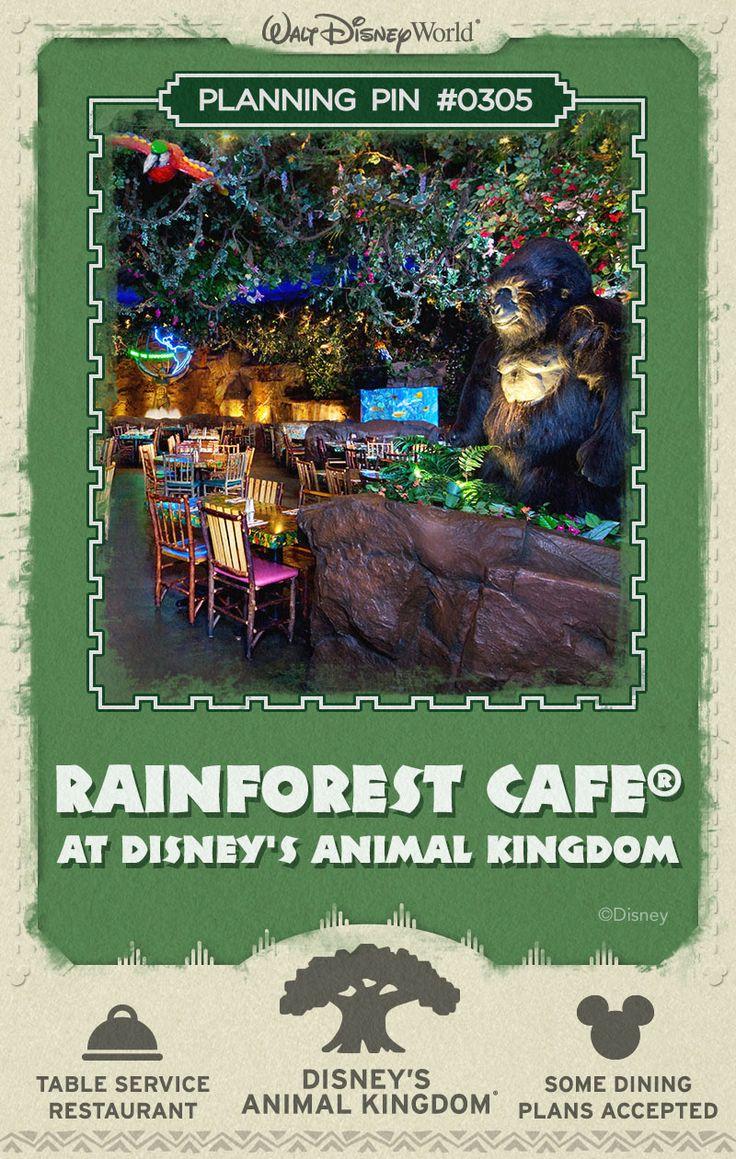 Walt Disney World Planning Pins: Rainforest Cafe at Disney's Animal Kingdom
