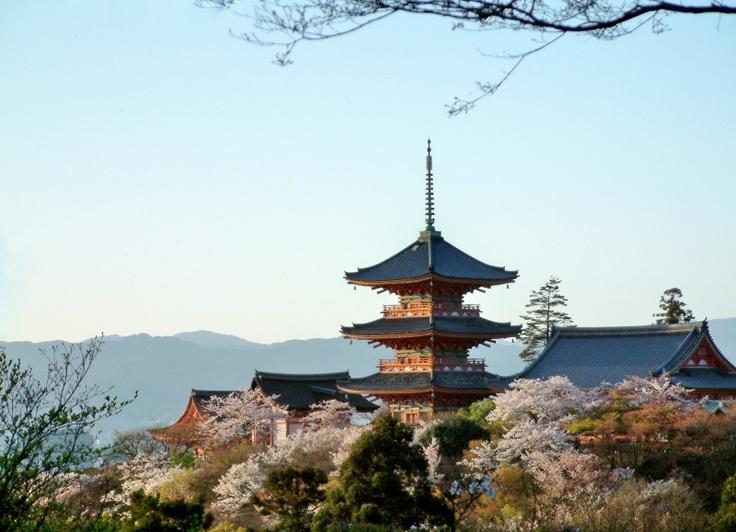 Kiyomizu Temple and stupa of cherry blossoms in Kyoto  清水寺の櫻は西方浄土への入り口