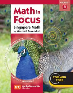 6th Grade Math- MIF Course 1 Cover