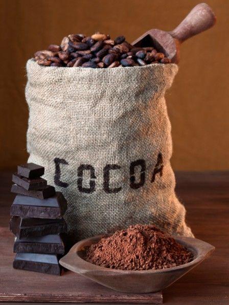Aldi-Kakaoanbau Aldi unterstützt nachhaltigen Kakaoanbau