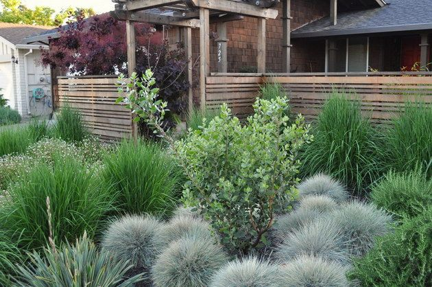 ornamental grasses for front of house | Landscaping Ideas For Front Yard Asian Landscape by Huettl Landscape ...