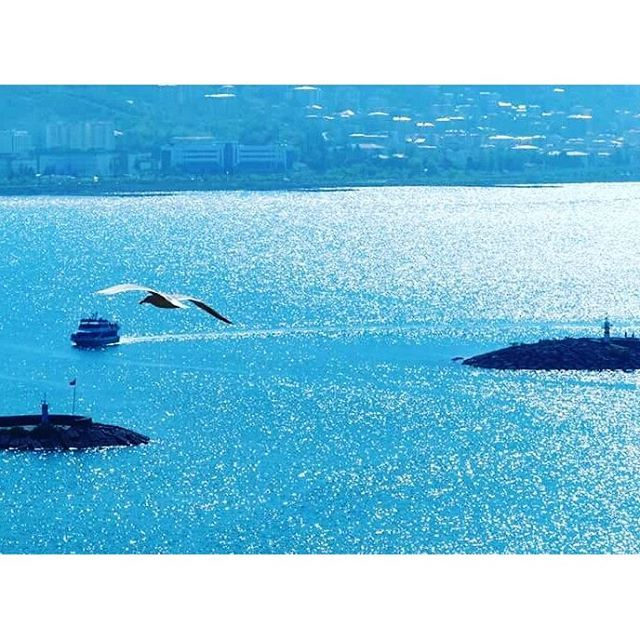 Giresun ⛵ Eastern Blacksea Region of Turkey ⚓ Östliche Schwarzmeerregion der Türkei #karadeniz #doğukaradeniz #giresun #travel #city #nature #ecotourism #mythological #colchis #thegoldenfleece #thecolchiandragon #amazonwarriors #tzaniti