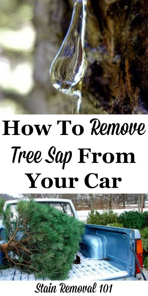 Lots of tips and tricks, plus product recommendations and DIY remedies to remove tree sap from your car exterior {on Stain Removal 101}
