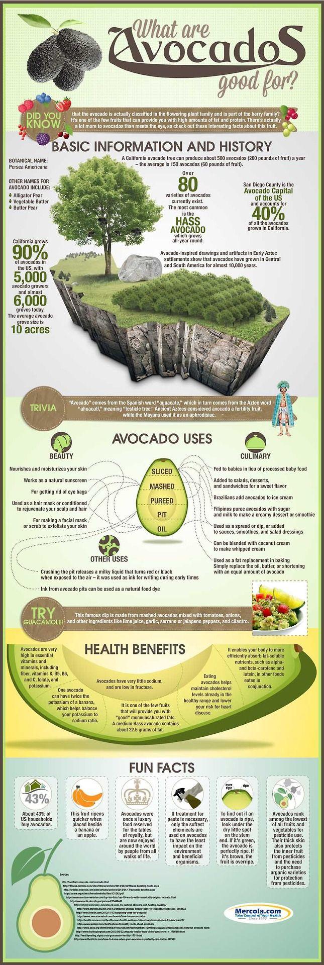 Health Benefit of Avocado - Healthy Food, Healthy Life!!!