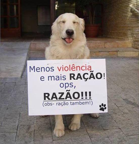 MENOS VIOLENCIA e MAIS RAÇÃO...(31)