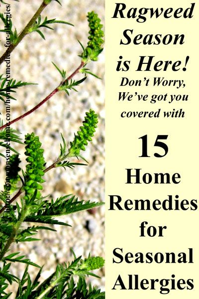 Home remedies for seasonal allergies and hay fever. Feel better soon with these easy to use natural allergy relief options. #naturalallergyrelief