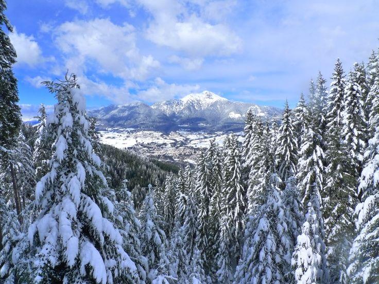 alpe cermis in Cavalese, Trentino - Alto Adige
