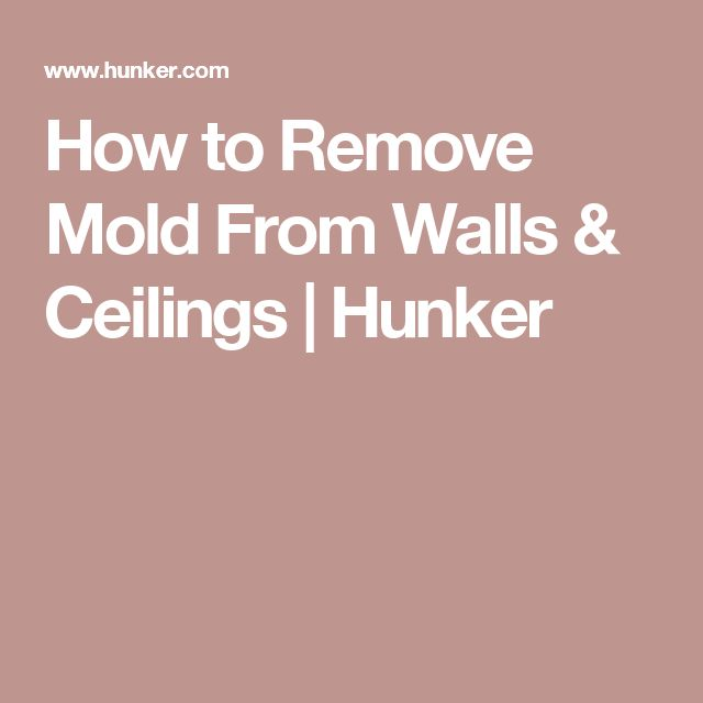 Best 25 Remove Mold Ideas On Pinterest Grout And Mould