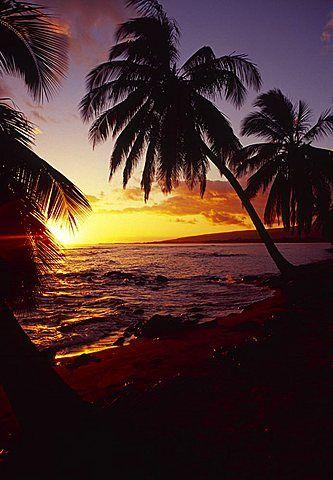 Sunset, Pakala, Kauai, Hawaii, USA                                                                                                                                                                                 Mais