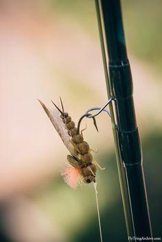 Semirealistic Foam Golden Stonefly dry fly