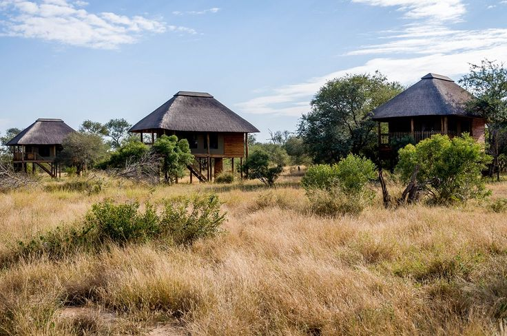 nThambo Tree Camp provides the utmost in eco-friendly luxury in the heart of the greater Kruger National Park, with tranquility and relaxation guaranteed.