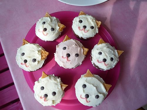 cat cupcakes because we're getting a cat today! by servas ♡ gschaeft, via Flickr