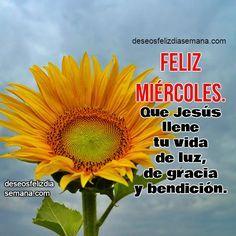 Centro Cristiano para la Familia: Feliz Miércoles. Buenos Deseos para ti Feliz Mi...