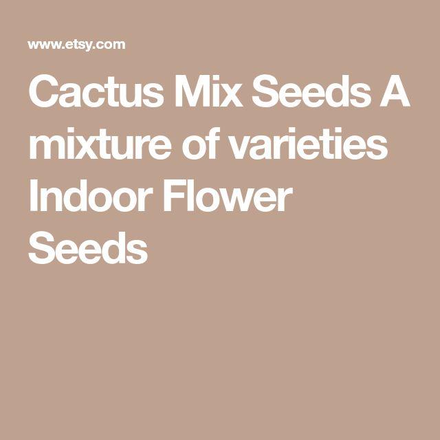 Cactus Mix Seeds A mixture of varieties Indoor Flower Seeds